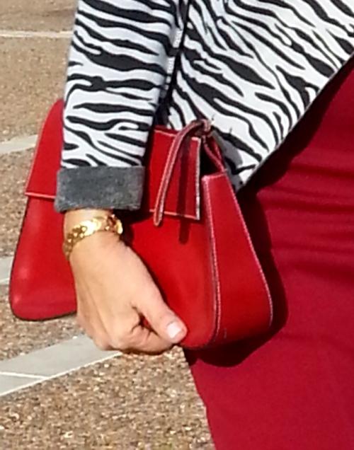 red anzari bag
