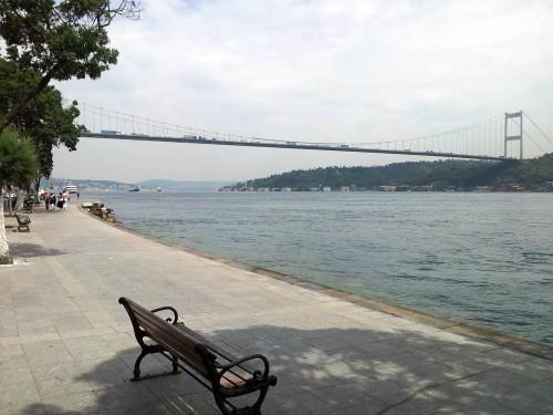 view the bridges